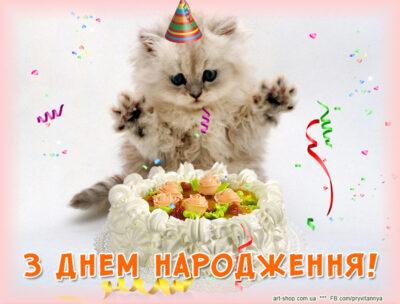 день народження листівка з котиком