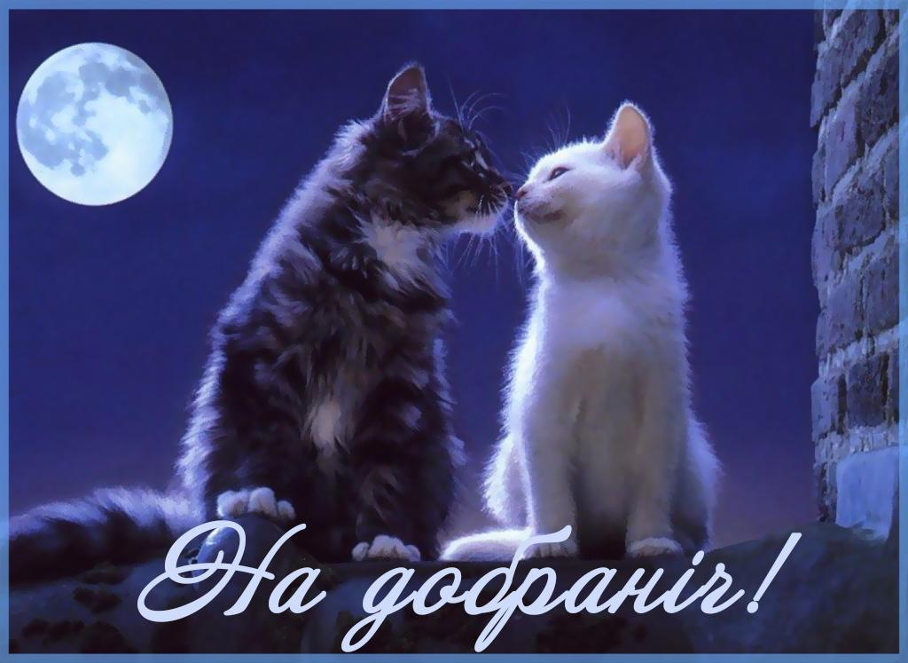 добраніч картинка коханому
