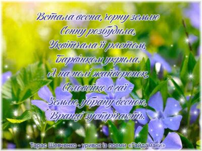 цитати шевченко