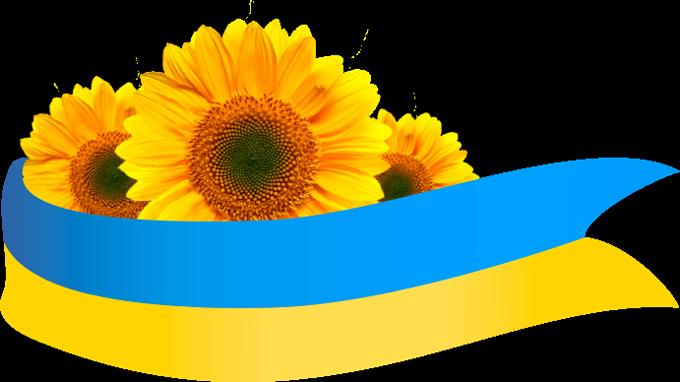 Стрічка національні кольори соняшник прапор