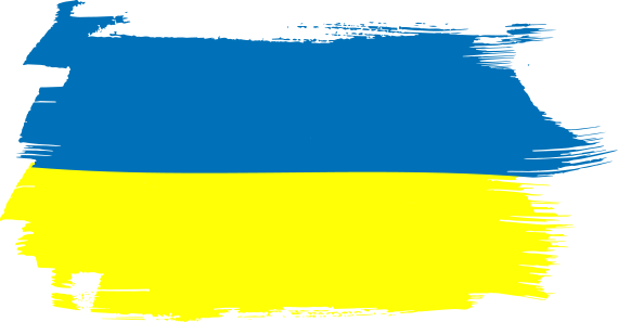 Елена Бойко  журналист Украина  биография