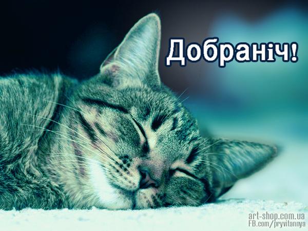 картинки на добраніч