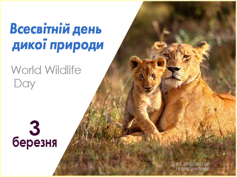 Всесвітній день дикої природи
