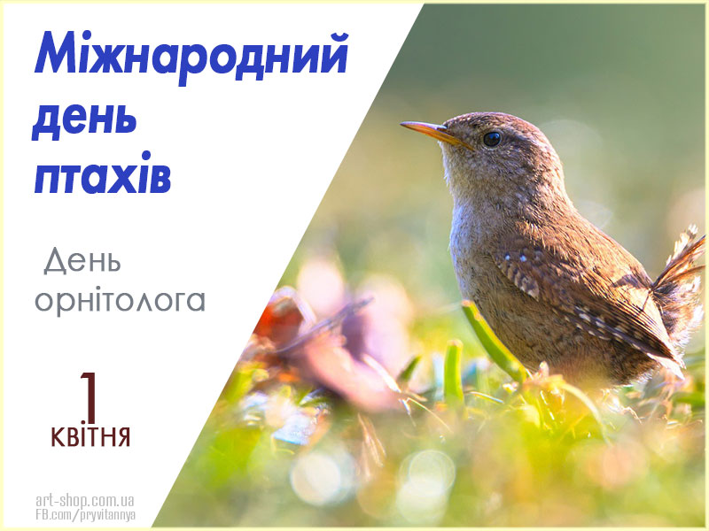 З Днем орнітолога